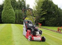 Roller Lawnmowers