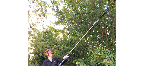 A cut above – The Lawnflite range of hedge cutters